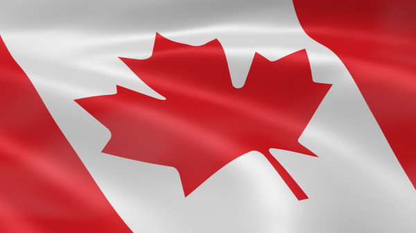 Top Canadian Immigration Consultants